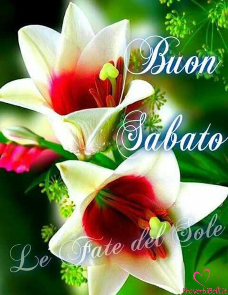 Belle-Immagini-Buongiorno-Sabato-Facebook-Whatsapp-22