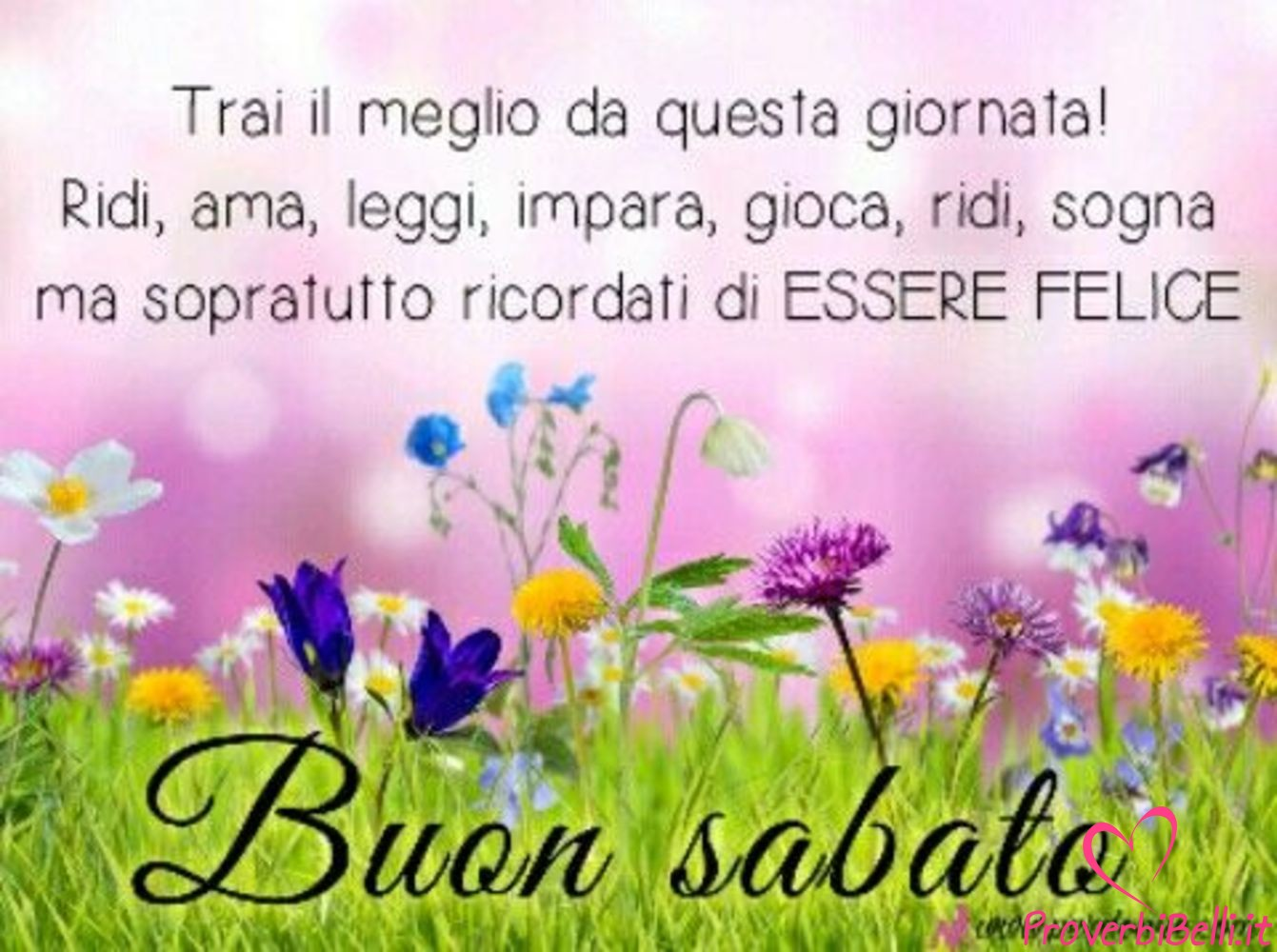 Belle-Immagini-Buongiorno-Sabato-Facebook-Whatsapp-235