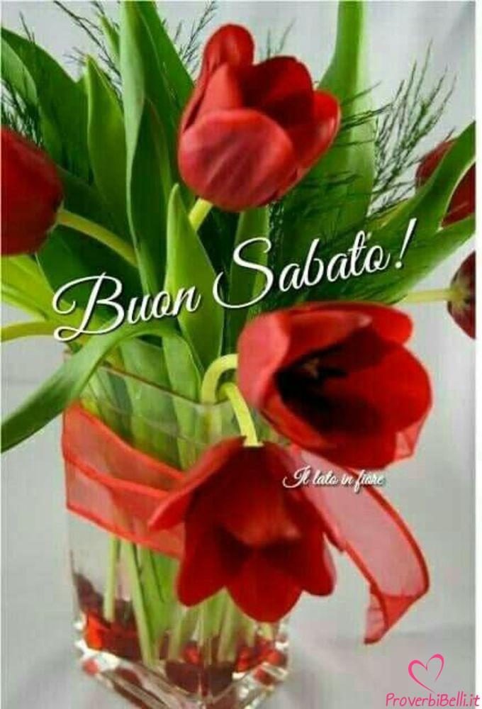 Belle-Immagini-Buongiorno-Sabato-Facebook-Whatsapp-237