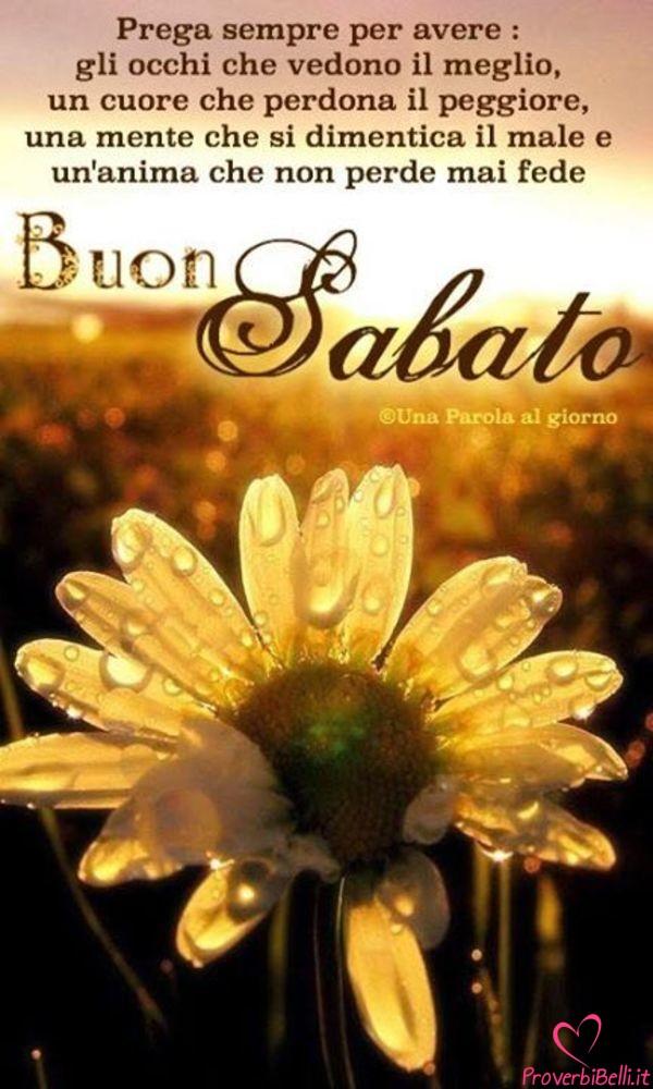 Belle-Immagini-Buongiorno-Sabato-Facebook-Whatsapp-24