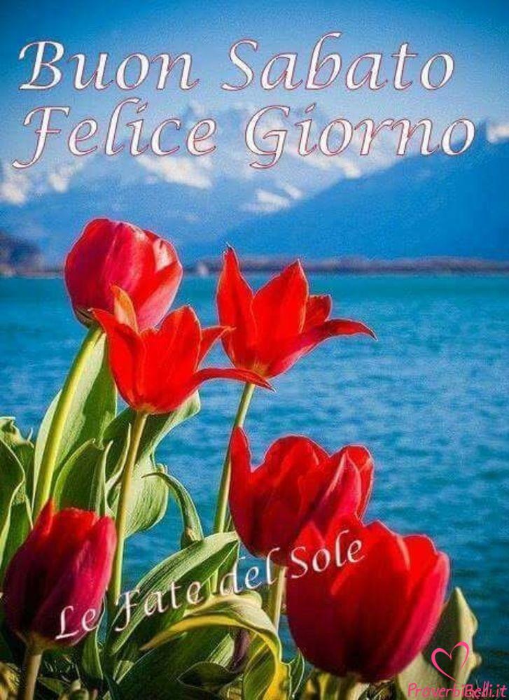 Belle-Immagini-Buongiorno-Sabato-Facebook-Whatsapp-244