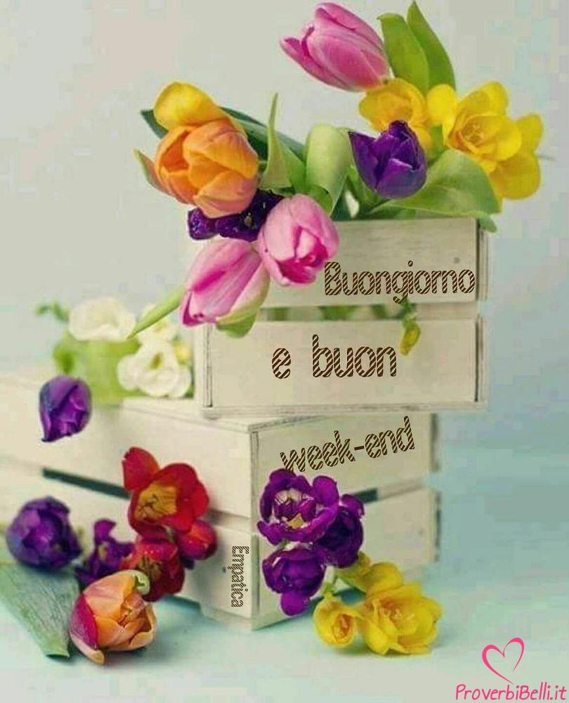 Belle-Immagini-Buongiorno-Sabato-Facebook-Whatsapp-248