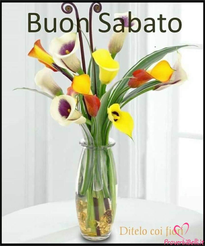 Belle-Immagini-Buongiorno-Sabato-Facebook-Whatsapp-26
