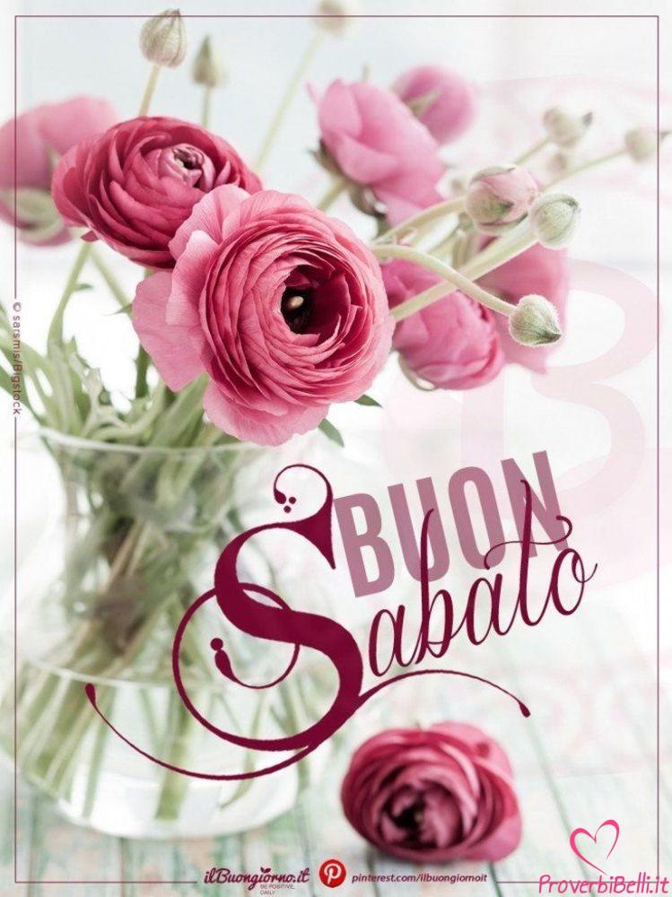 Buongiorno sabato immagini belle pagina 9 di 65 for Immagini belle buongiorno amici