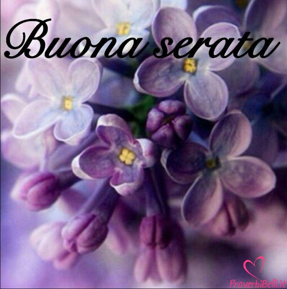Belle-immagini-per-whatsapp-Buonasera-280
