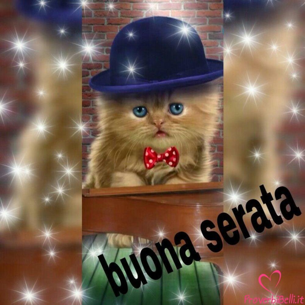 Belle-immagini-per-whatsapp-Buonasera-283