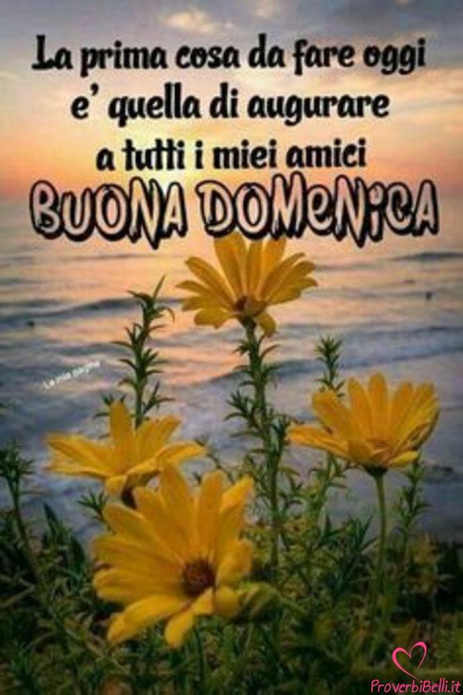 Buongiorno-Domenica-Immagini-Buona-per-Facebook-Whatsapp-707