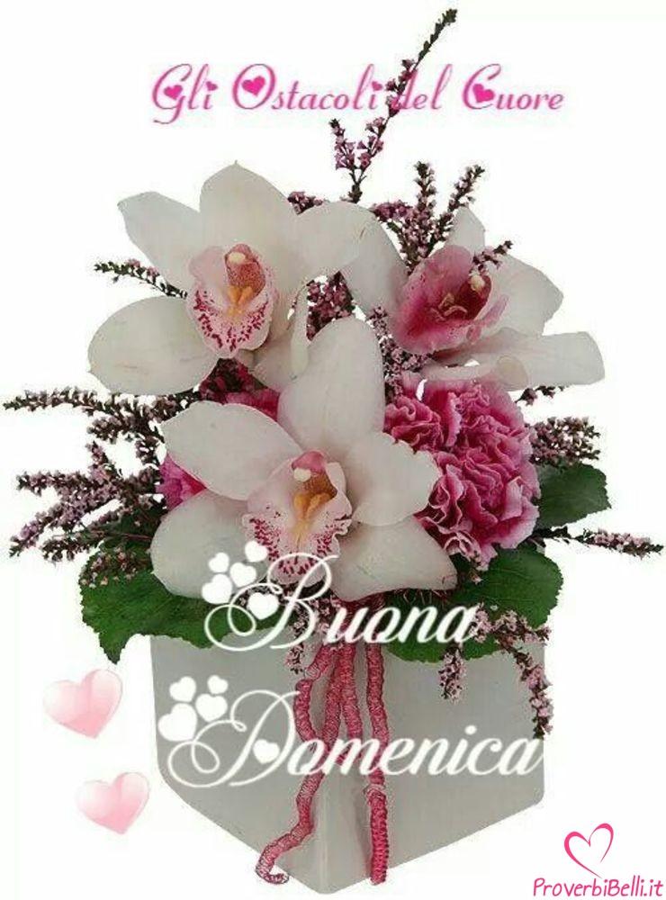 Buongiorno-Domenica-Immagini-Buona-per-Facebook-Whatsapp-711