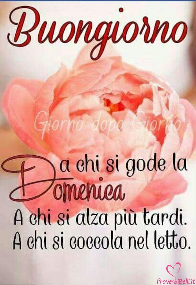 Buongiorno-Domenica-Immagini-Buona-per-Facebook-Whatsapp-712