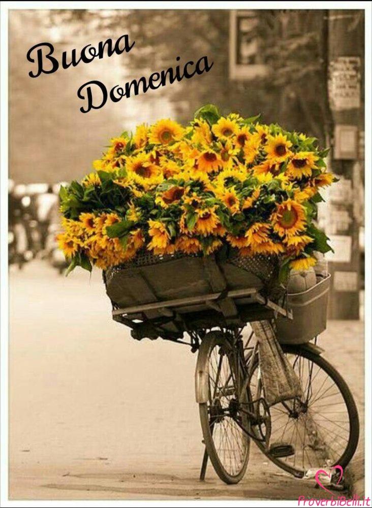 Buongiorno-Domenica-Immagini-Buona-per-Facebook-Whatsapp-724