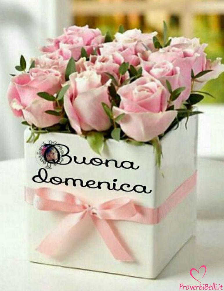 Buongiorno-Domenica-Immagini-Buona-per-Facebook-Whatsapp-741