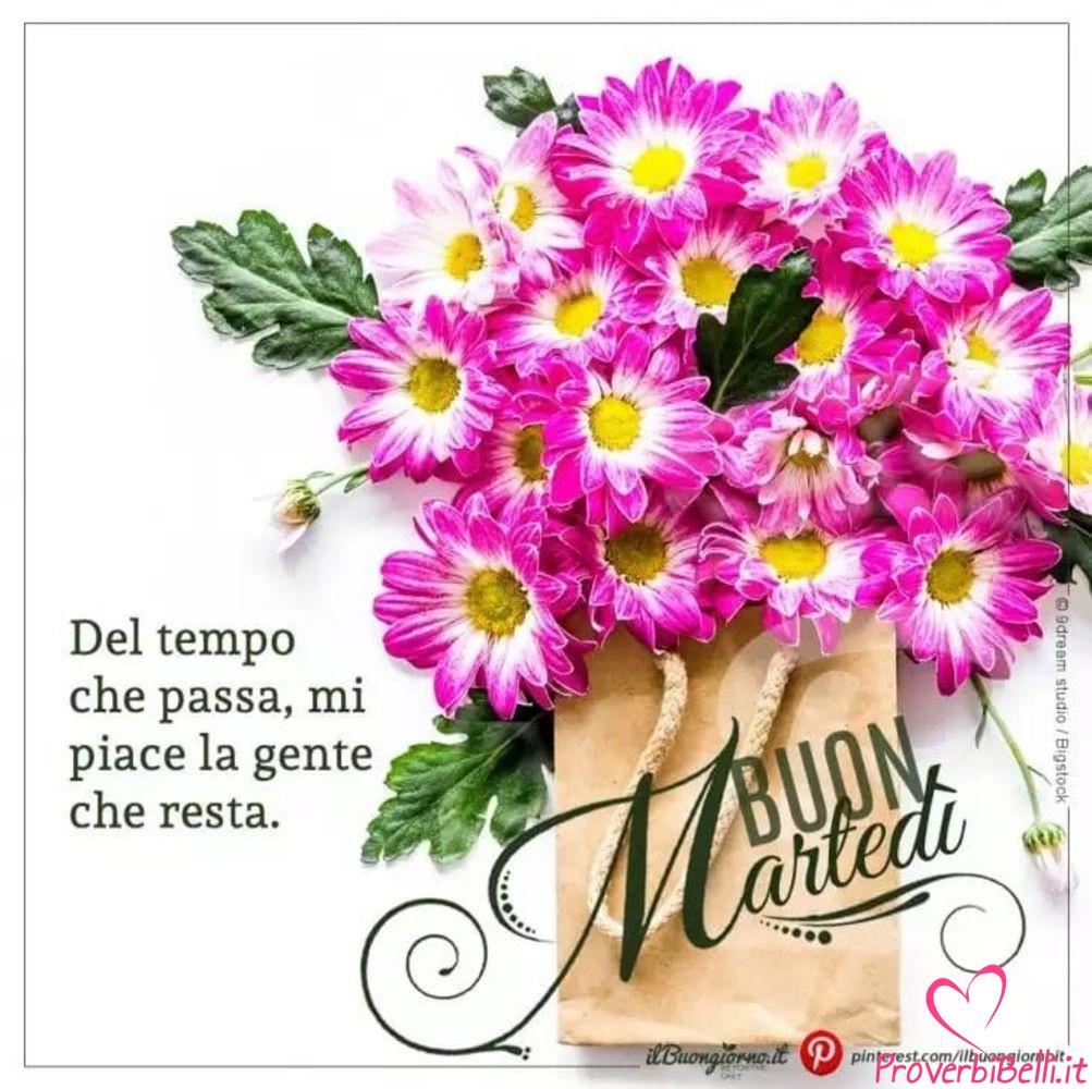 Buongiorno marted immagini per whatsapp pagina 41 di 42 for Immagini belle buongiorno amici