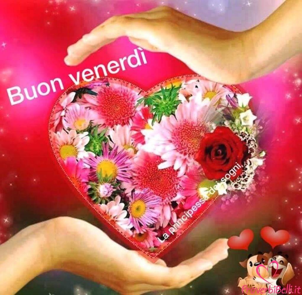 buongiorno belle immagini per whatsapp 135 proverbibelli it