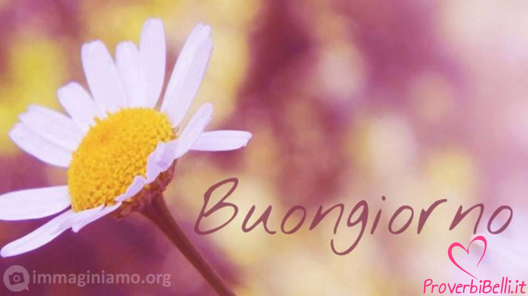 Открытки на итальянском языке доброе утро
