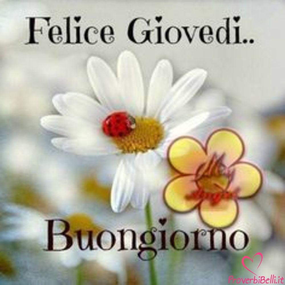 Buongiorno Fate Del Sole Proverbibelli It