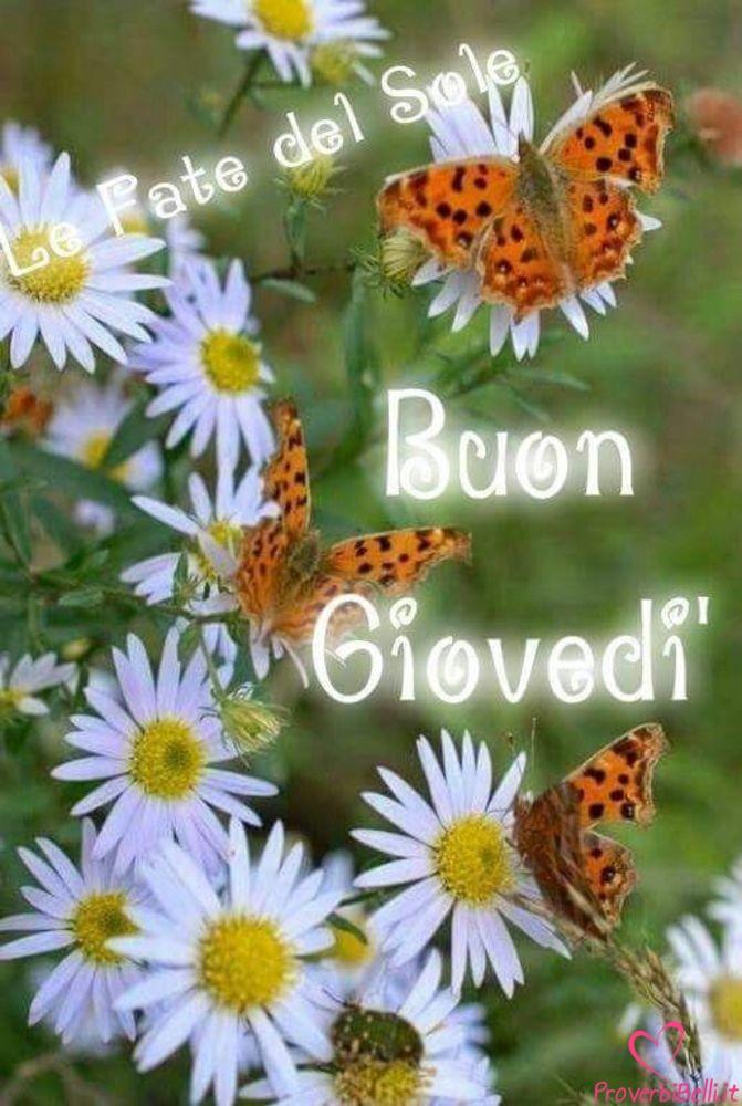 Giovedì-Immagini-Foto-per-Facebook-Whatsapp-80