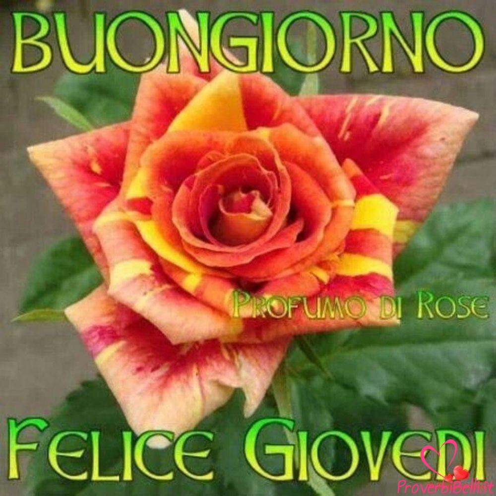 Giovedì-Immagini-Foto-per-Facebook-Whatsapp-98