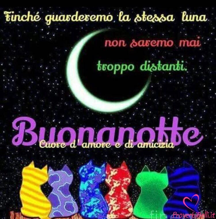 Immagini Belle Per Whatsapp Buonanotte 148 Proverbibelli It