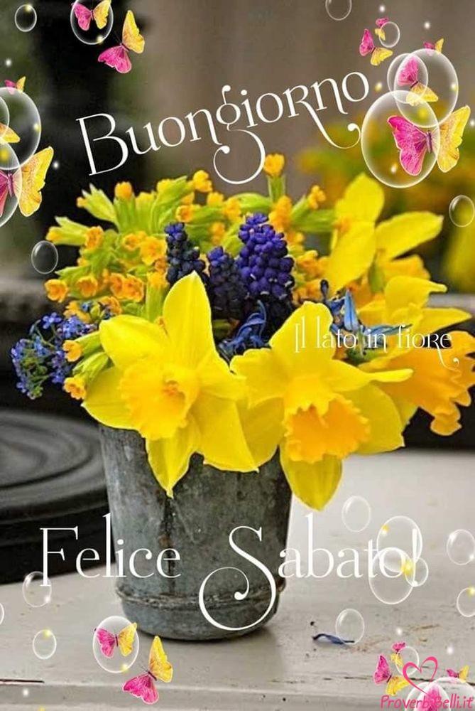 Immagini-Buongiorno-Sabato-per-Whatsapp-666