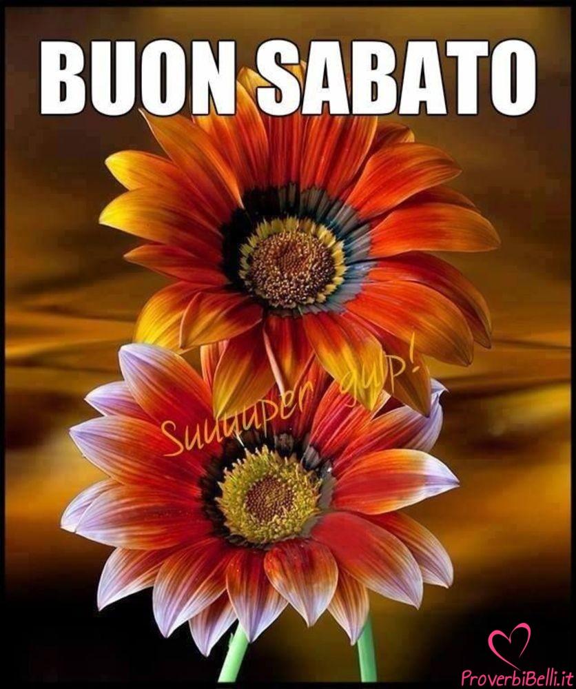 Immagini-Buongiorno-Sabato-per-Whatsapp-685