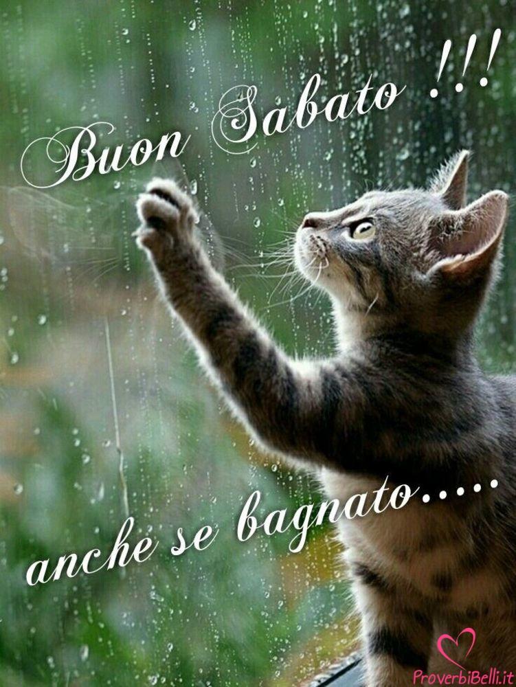 Immagini-Buongiorno-Sabato-per-Whatsapp-698