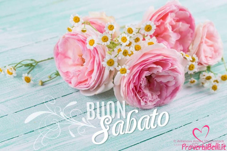 Immagini-Buongiorno-Sabato-per-Whatsapp-712