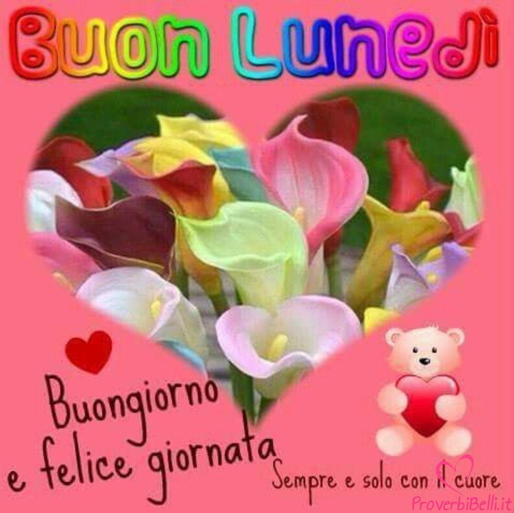 Lunedì-Immagini-belle-whatsapp-561