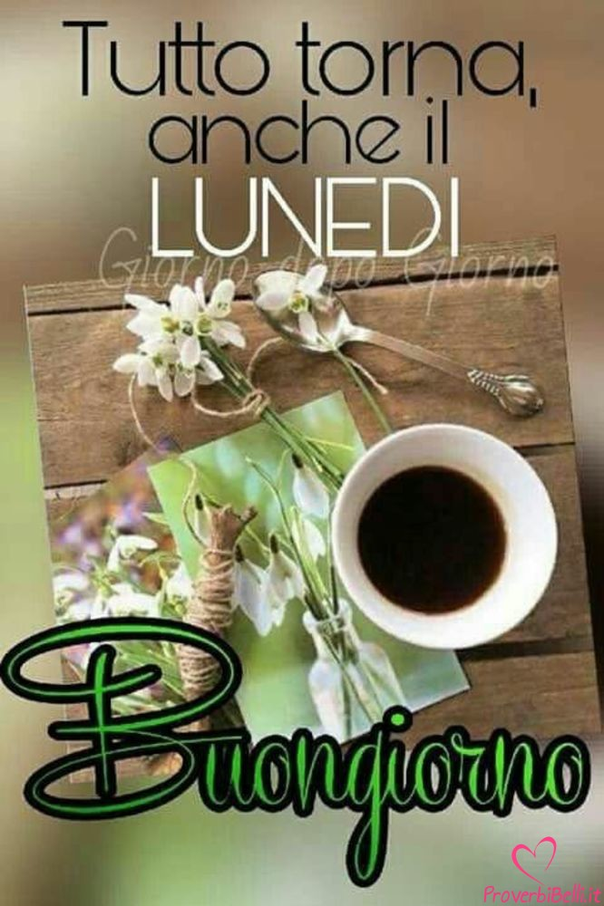 Lunedì-Immagini-belle-whatsapp-565