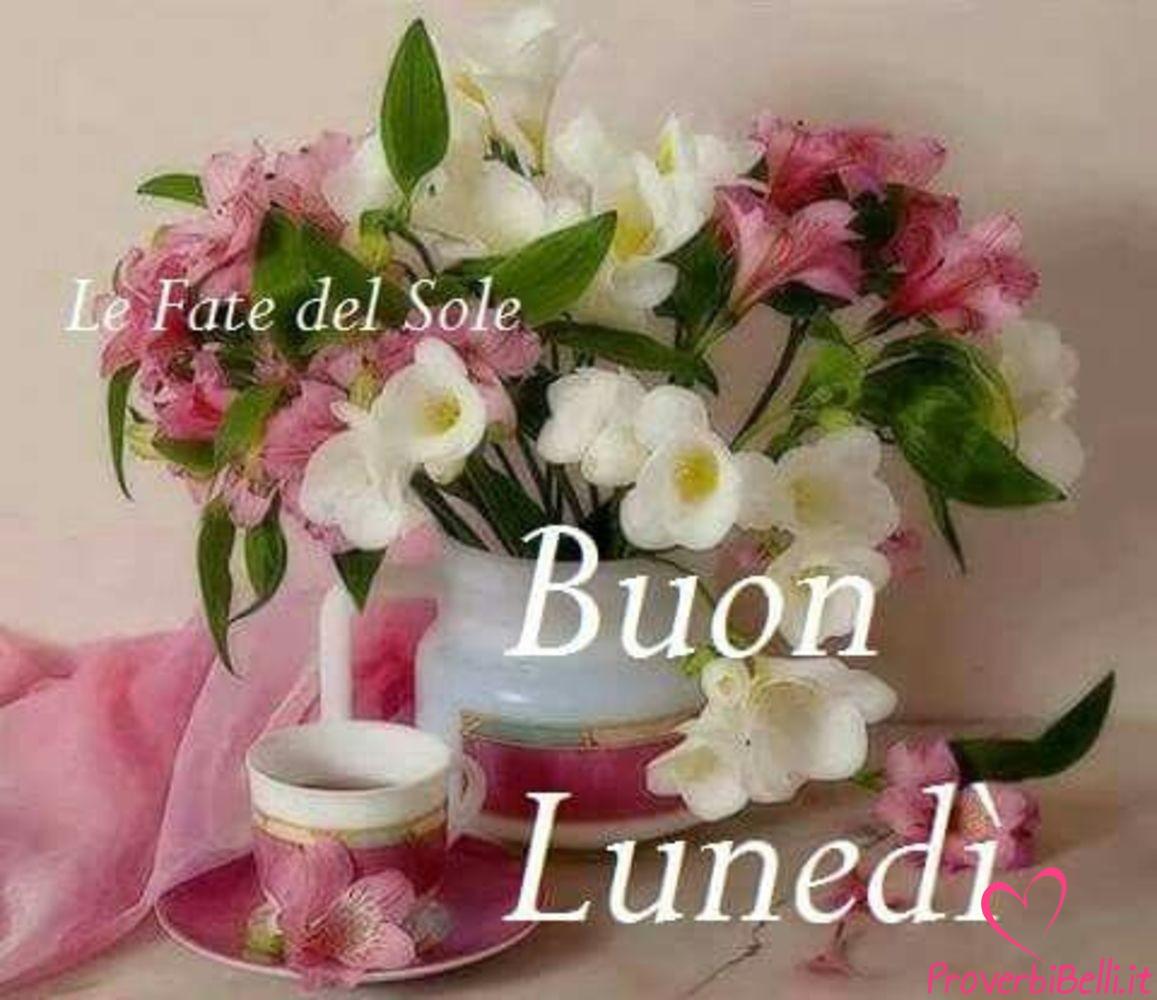 Lunedì-Immagini-belle-whatsapp-579