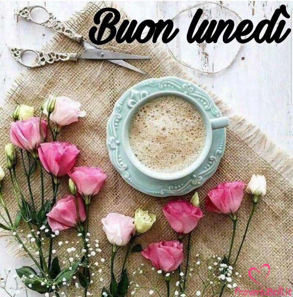 Lunedì-Immagini-belle-whatsapp-58