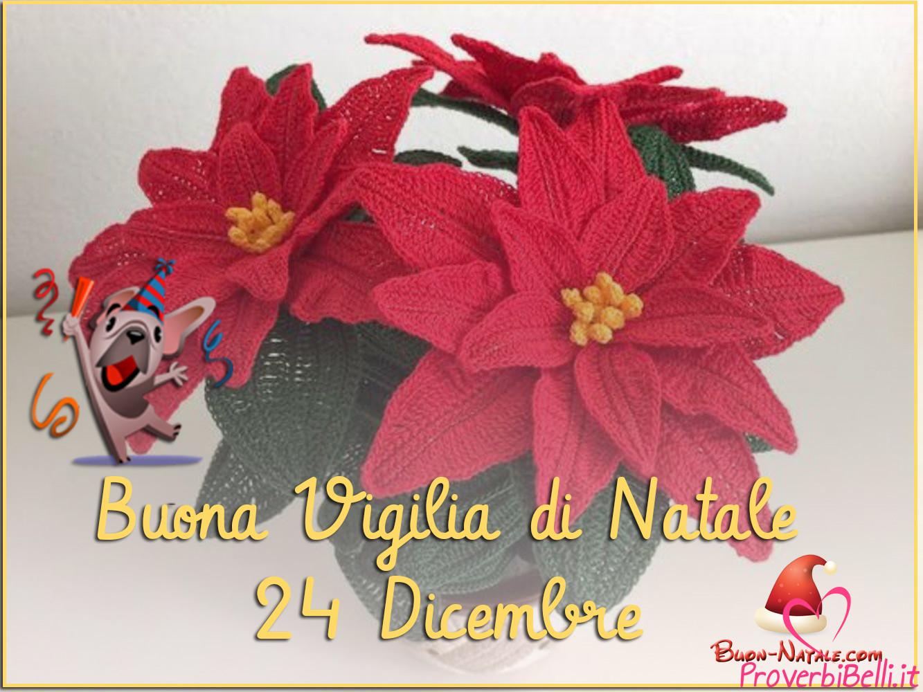 Buona Vigilia di Stella di Natale 24 Dicembre da Condividere su Whatsapp